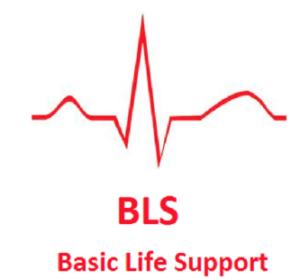 bls certificate online