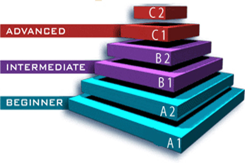 levels of cpr training